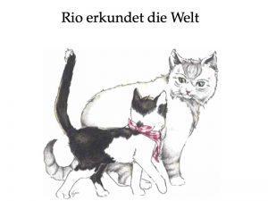 Titelbild unseres Rio-Buchs